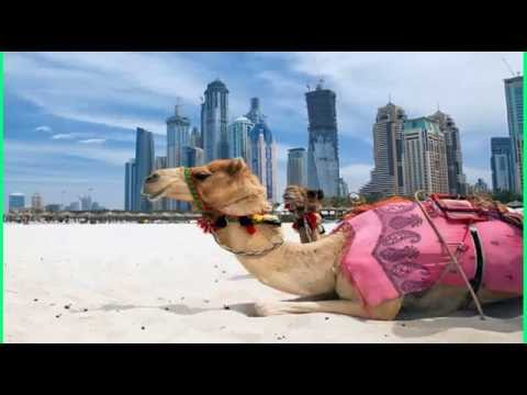 How to move Canada from UAE?