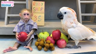 BiBi going to buy Ruby parrot's fruit and then ..