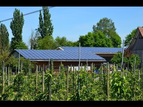 The Cost Of Solar Panels | Green Energy Spot