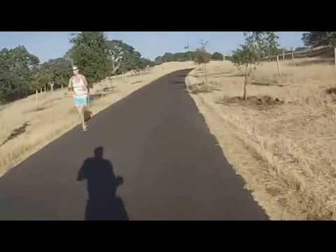 Dish Run - Palo Alto Run Club