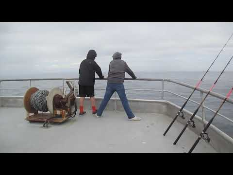 Fish Cleaning On The Speed Twin Boat Channel Islands Sports Fishing