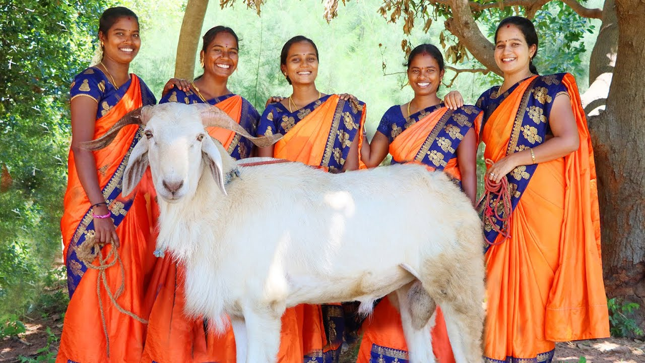 KING OF SHEEP CURRY   Full Sheep Lamp Curry   Traditional Mutton curry   Semmari Goat   VillageBabys