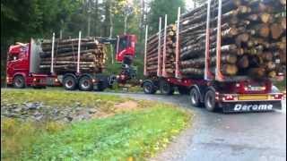 Scania R730 Timmerbil