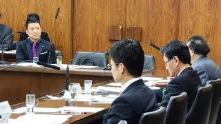 2015.4.15 国の統治機構に関する調査会参考人質疑