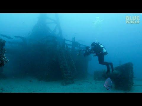 Artificial Reefs | JONATHAN BIRD'S BLUE WORLD