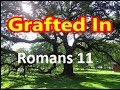 Called To Mutual Acceptance |Sunday School Lesson| May 19, 2019 | Romans 11: 11-24 | ISSL