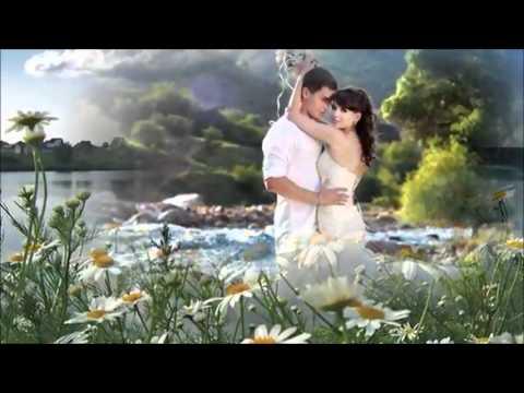 Ромашковые поля для всех влюбленных