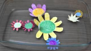 КАК БУМАЖНЫЕ ЦВЕТЫ РАСПУСКАЮТСЯ НА ВОДЕ???(В сегодняшнем выпуске хочу показать: Как сделать бумажные цветы которые распускаются на воде, также можно..., 2016-03-02T15:00:02.000Z)