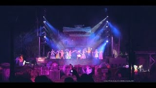 Disneyland Fantasmic! 2012 Full HD