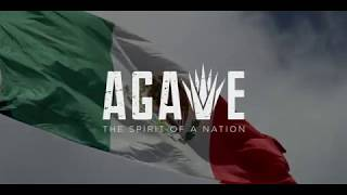 Agave Spirit of a Nation Official Teaser