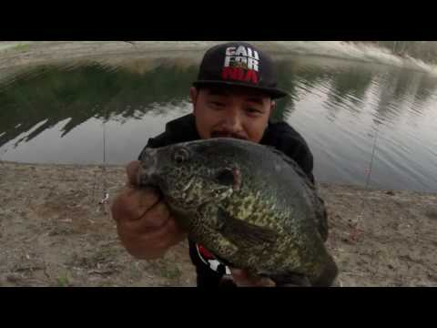 San Diego Fishing: Lake Jennings Catfish/Panfish!
