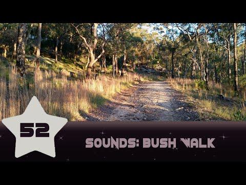 ASMR Sound Video 52: Australian Bush Walk