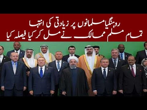 Leaders Of Muslim World Join Hands On Burma Tragedy