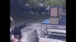 Special Purpose Weapons 5/Interlude 6-Pistol/Shotgun Ammo