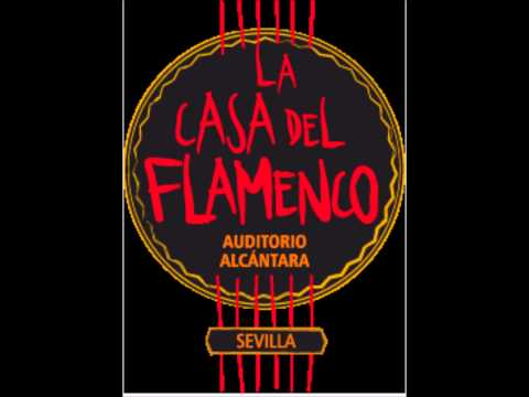La Casa de Flamenco Sevilla September, 2014