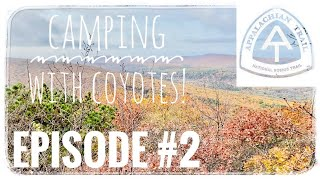 Fall Backpacking in tнe Berkshires: Episode 2 - Mount Everett & Bushnell, camping with wild coyotes!