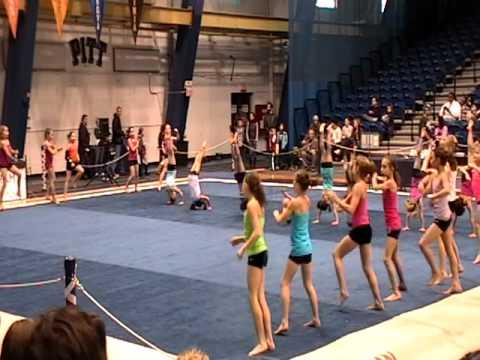 level 7 state gymnastics meet gaylord