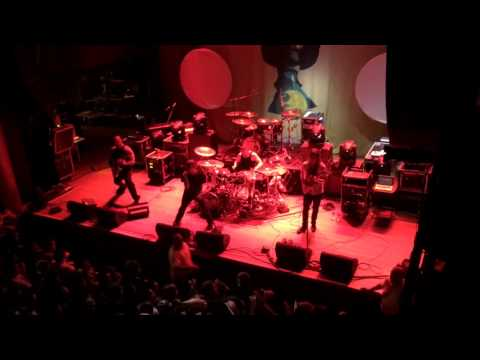 The Faceless: Accelerated Evolution (Live)