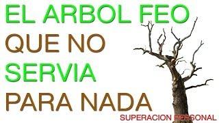 Superacion Personal y Autoestima - Motivacion en Español thumbnail