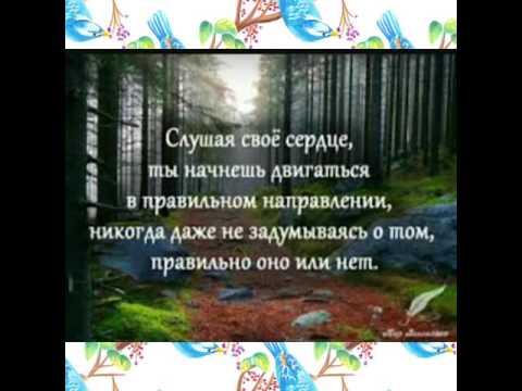 Красивые цитаты и картинки