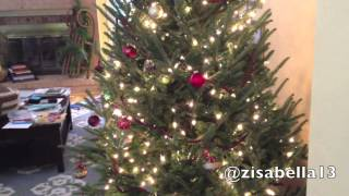 CHRISTMAS WITH ZOË EPISODE 1: Decorating the Christmas Tree Thumbnail