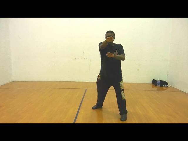 Wing Chun Bil Biu Jee Lan Sao