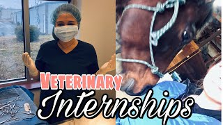 VETERINARY INTERNSHIPS // how to get one, what to expect, and how to rock it!