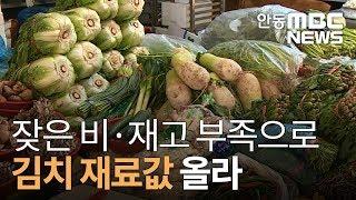 김치 재료 가격 고공행진 / 안동MBC