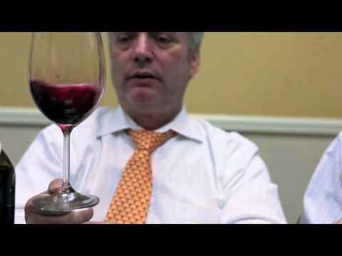 Download Yatir Forest Red Wine