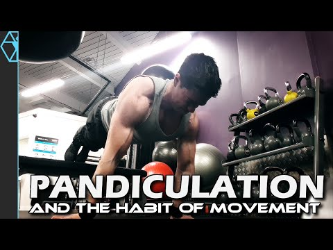 Do This to Gain Energy and Strength for Workouts! Pandiculation and the Habit of Moving