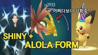 포켓몬고 이로치 알로라 나시 어쩌다보니 풀강중.. (이로치 피그점프+전세계 마지막 꼬깔 피츄) [Pokémon GO]