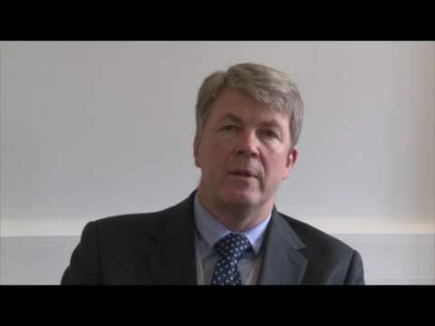Chief Executive:  Bengoa Report