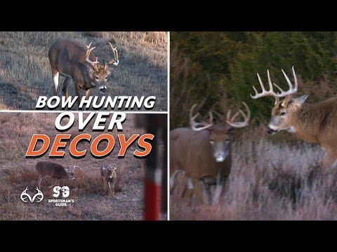 Best Bow Hunts Over Decoys |  Deer Hunts | Monster Buck Moments Presented by Sportsman's Guide