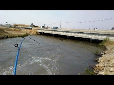 Fishing a random canal youtube for San luis reservoir fishing report 2017