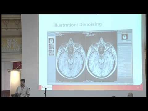 10 - O. Commowick - MedInria neuroimaging software system for Diffusion MRI