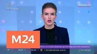 В Подмосковье застрелили следователя по особо важным делам МВД - Москва 24