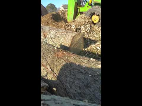 Newport News Stump Grinding