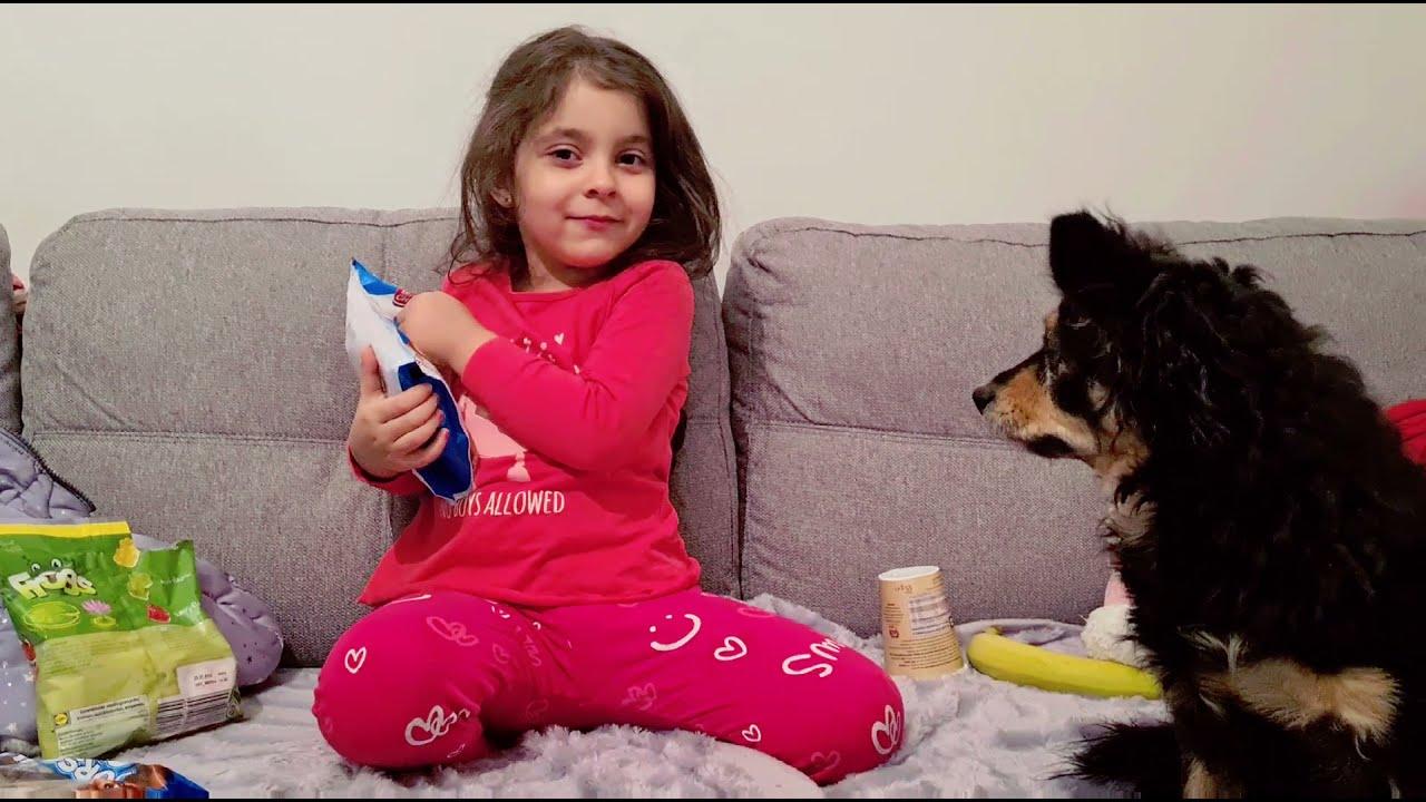 Faze Comice/Maria Vs Bella! Câine Amuzant!