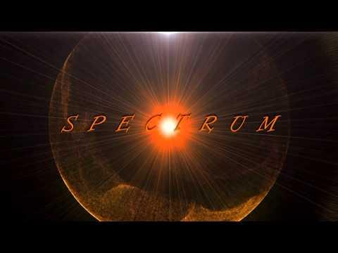 Spectrum Florence + The Machine (polish fan club & drag queen Kim Lee)