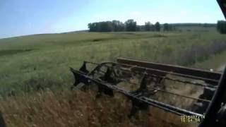 11) МТЗ 82 с жаткой ЖВП-4,9 обкос озимой пшеницы.