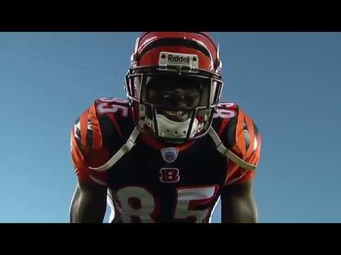 Chad Johnson/OchoCinco Highlights - Can