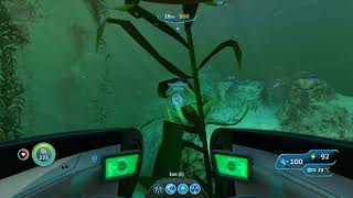 Subnautica Eye stalk seed
