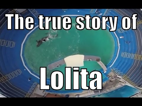 Lolita : Novel by Vladimir Nabokov in Hindi summary Explanation and full analysis from YouTube · Duration:  16 minutes 10 seconds