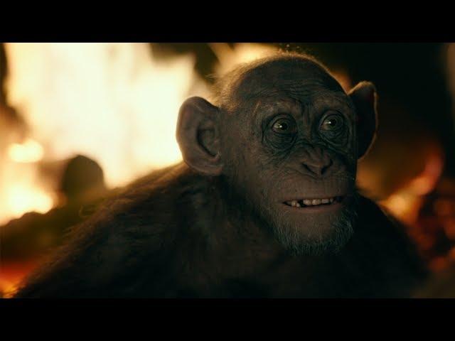 "Apornas planet: Striden | ""Bad Ape"""