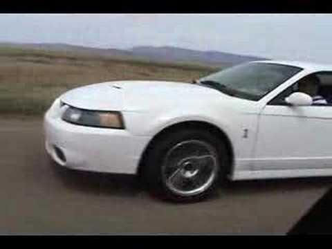 2004 Cobra SVT vs. 2006 GTO