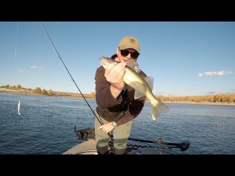 Smashing River Walleyes - Missouri River, ND