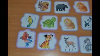 Дидактические игры для ознакомления с природой делаем своими руками