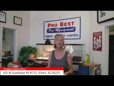 Best Post Office in Gilbert AZ 85233