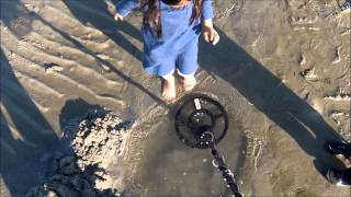 Pulse Induction Metal Detecting for Old Gold at Low Tide
