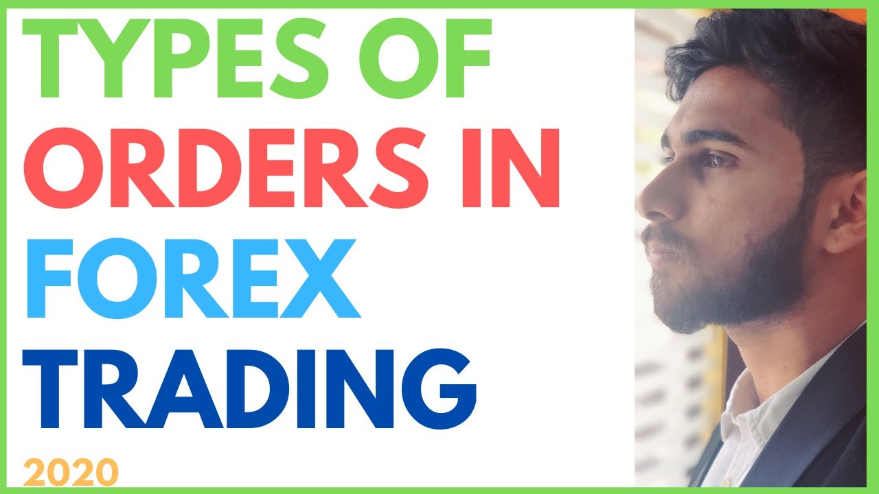 What Type of Forex Trader Are You?